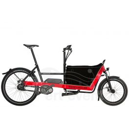Marques Riese & Müller Vélo électrique Riese and Müller Packster 40 City 2018