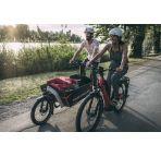 Vélo électrique Riese and Müller Packster 60/80 Vario HS