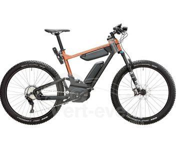 Vélo électrique Riese and Muller Delite Mountain