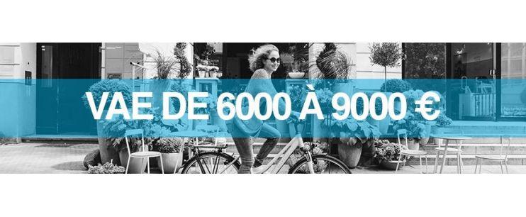 Vélo électrique prix : 6000 à 9000 euros