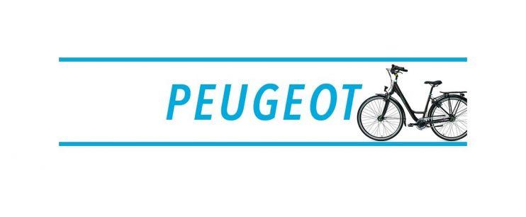Console vélo électrique Peugeot