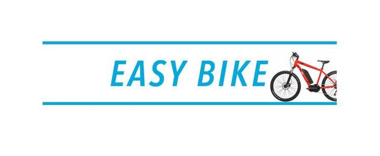 Console vélo électrique Easy Bike